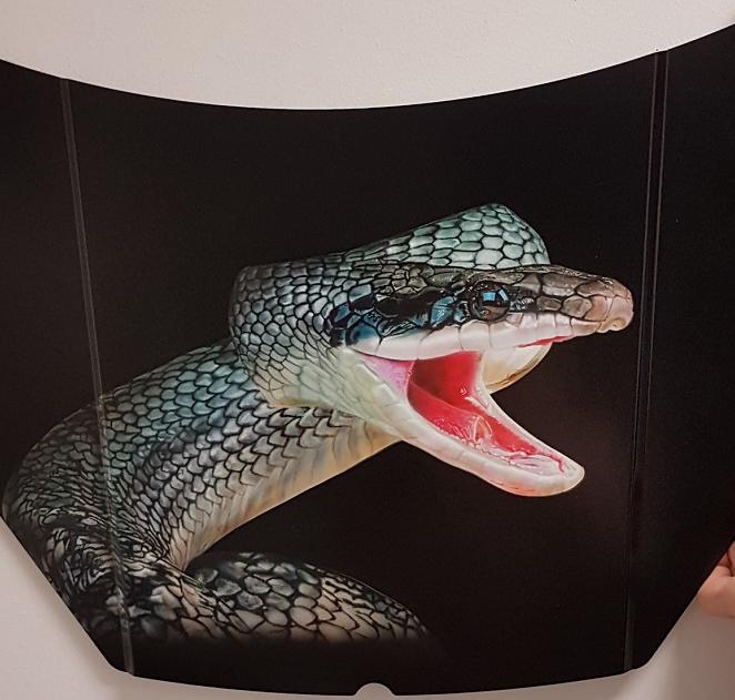 -serpent-aérographe-hyperréalisme-formations-stage-aérographe-art-artiste-peintre-carrosserie-métier-aéro-véhicule-automobile-aérographe-iwata-créatex-Poitou-vienne-Poitiers