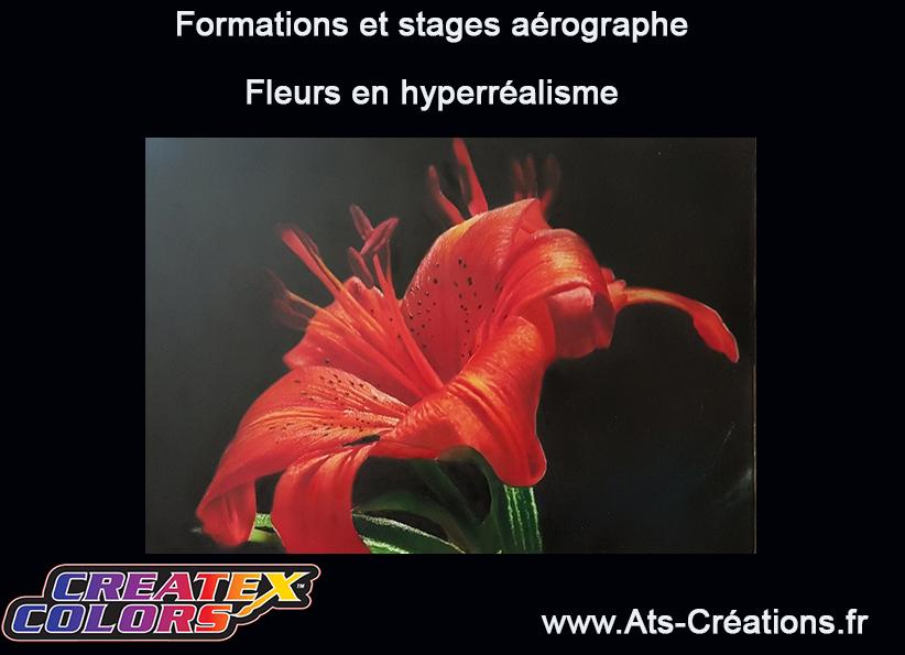 fleur à l aérographe,formation et stage aérographe