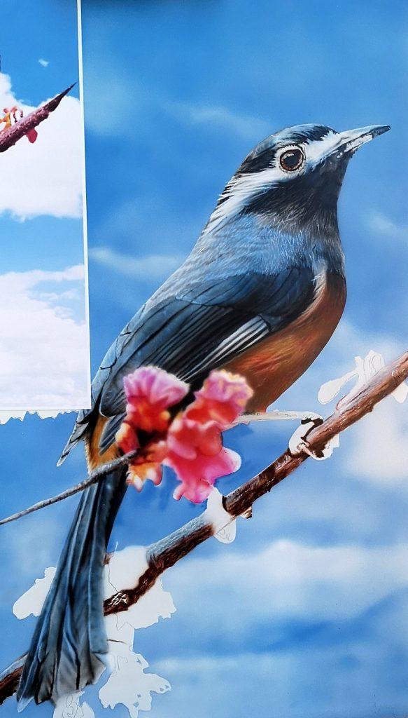 Oiseau à l aérographe-peinture sur-dibon