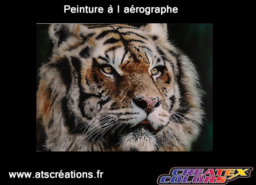 --œil-tigre-hyperréalisme-aérographe-formation-aérographe-école-réalisme-art-artiste-peintre-peindre-formation-école-hyperréalisme-cours-lecon-formation