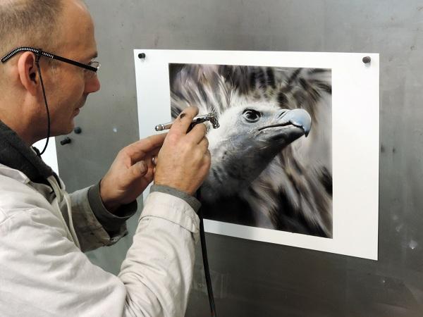 vautour en peinture aérographe, formations et stage aérographe