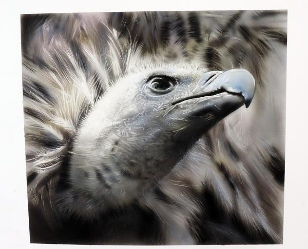 vautour en peinture aérographe,formations et stage aérographe