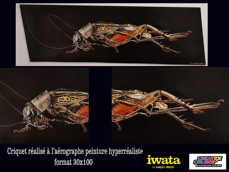 cricket-peinture-art-artiste-peintre-école-formation-stage-adulte-centre-acrylique-Poitou-vienne-iwata-créatex-dibon-hyperréalisme-décoration