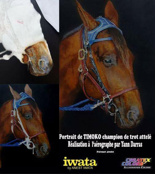 peinture-cheval-formation-aérographe-stage-école-art-artiste-peintre-peindre-vienne-Poitou-airbrushiwata-créatex-décoration-colorimétrie